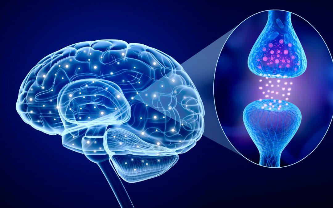 Un neurotransmisor podría explicar por qué se produce la migraña
